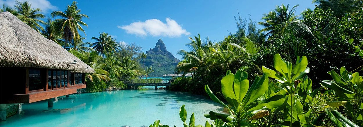 Read more about the article Top 10 Resorts for Green Getaways